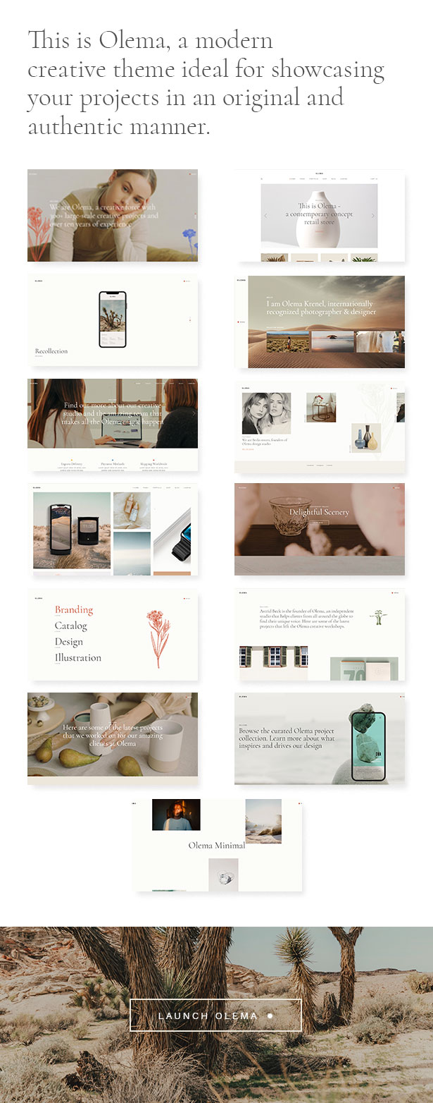 Olema - Creative Agency Theme - 2